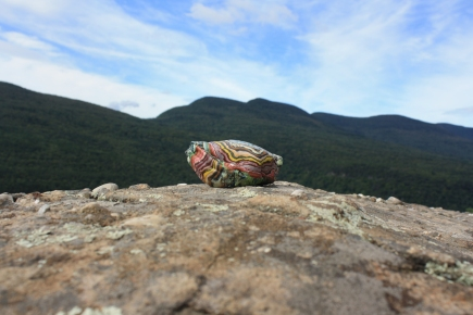 piece by Moriarty, taken at the Platte Clove Artist-in-Residence Program in the Catskill Mountain Wilderness