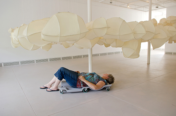 Implementation of Adaptation, Garrison Art Center, Garrison, New York, 2013, 6 feet 1 inch x 36 feet x 12 feet, suspended 40 inches above the floor