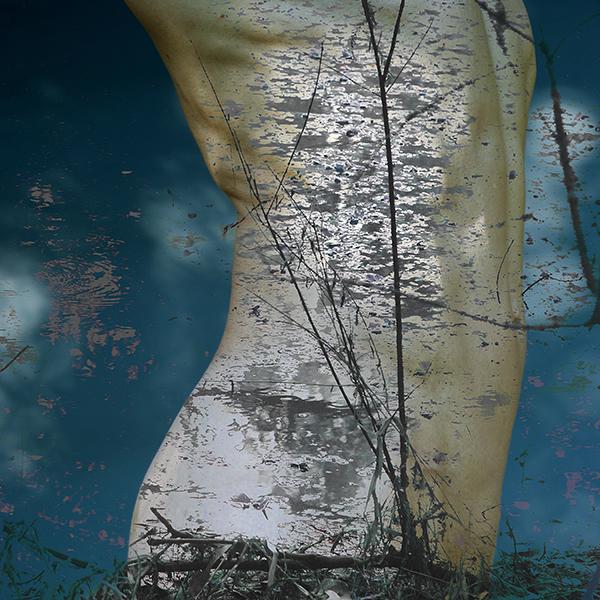 delaville_torso_trees-3
